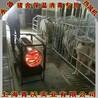 新疆養殖場取暖熱風機、豬舍保溫設備