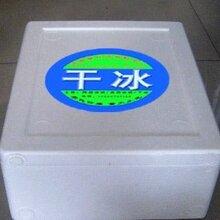 上海延安中路实验干冰图片