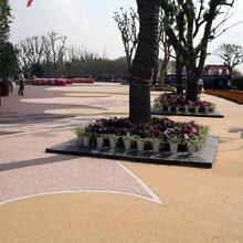 南京露骨料彩色透水地坪的施优游流程图片