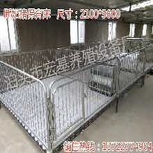 小猪双体保育床厂家直销猪保育栏尺寸图片