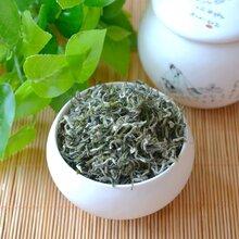 产地直销高档绿茶茶叶礼盒装明前碧螺春板栗香型绿茶礼品茶图片