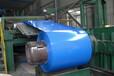 彩钢卷板彩钢卷彩涂卷山东彩钢卷彩钢卷生产厂家彩涂板彩涂卷彩钢板
