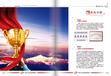 中国行业最具影响力十大品牌办理中心