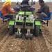 洋蔥移栽機型號價格洋蔥移栽機廠家