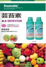 高纯度芸苔素内酯,植物生长调节剂花卉,果树专用调节剂
