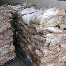 青岛港乌拉圭盐湿牛皮进口清关资料要哪些