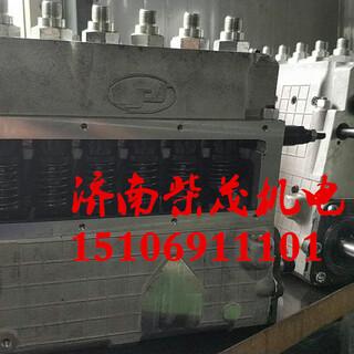8V190柴油机BHT6P170L济柴12V190喷油泵BH6Z140ZT柱塞190喷油器济柴6190大修配件图片3