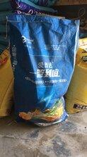 用在大葱上什么杀虫药肥效果最好?图片