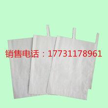 葡萄套袋水果套袋育果袋廠家直銷批發圖片