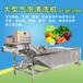 气泡清洗机全自动气泡冲击快速洗菜设备中央厨房流水线洗菜设备