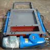 DEZ200200电液动腭式闸门使用环境