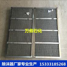 丝网除沫器厂家、高效型丝网除沫器图片