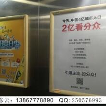 分众传媒解析中国数字传播主导趋势