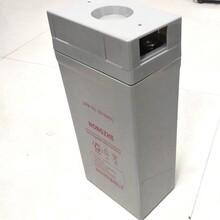 宏哲UPS\EPS\通信电源用蓄电池2V-160AH免维护铅酸蓄电池图片