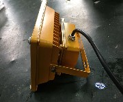 LED防爆投光灯30W防水防爆壁灯防爆吸顶灯BFC8188图片