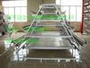 养殖设备阶梯式底层履带式清粪机传送带式全自动清刮粪机养鸡设备
