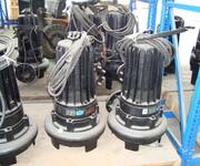 南京蓝深制泵集团WQ15-10-1.5kw大通道叶轮结构水泵图片