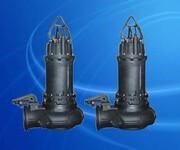 南京蓝深制泵集团WQ40-10-2.2KW立式耦合式安装水泵图片