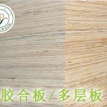 定制免熏蒸木方价格杨木木方图片