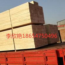 青岛供应无锡免熏蒸木方LVL杨木木方不易劈裂图片