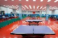 内蒙古鄂尔多斯运动木地板,室内训练篮球木地板专业铺装,首选胜枫