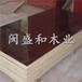 阜新建筑模板