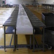 肉類分割線豬肉分割線肉類分割輸送設備圖片