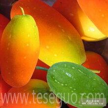 红香果红香果种子红蜜果种子红参果种子火蜜果种子