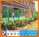 苏州学校护栏网苏州学校围墙钢丝网龙桥护栏专业定制