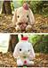 毛绒玩具可爱流氓兔公?#34892;?#30333;兔玩偶布娃娃抱枕生日礼物来图来样厂家定制