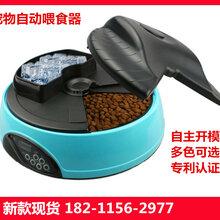 汾陽智能寵物喂養器圖片