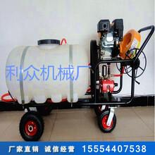 手推式高压喷雾器喷射力强果园喷雾器价格农业喷雾器图片图片
