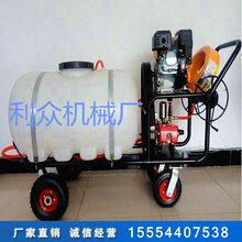 手推式園林噴霧器農用高壓噴藥器自走式打藥機價格圖片