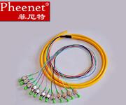 Pheenet菲尼特FCAPC12芯1.5米单模束状尾纤光缆跳线电信级图片