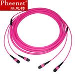 Pheenet菲尼特MPOMTP-MPOMTP24芯3米万兆100GMTP光纤线图片