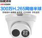 DS-2CD3335(D)-I300萬日夜型半球型網絡攝像機