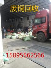 锦溪废品回收站废铝回收废铜回收不锈钢回收废铁回收