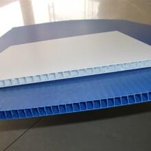 成都中空板成都塑料中空板成都pp中空板