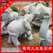 供应石雕大象厂招财石雕大象工艺石雕大象材质