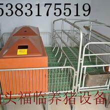 母猪产床仔猪保育床漏粪板保温箱
