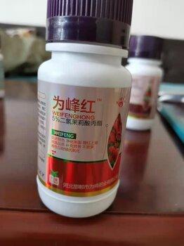 二氫茉莉酸丙酯催紅上色劑效果好二氫茉莉酸丙酯廠家價格-為峰紅
