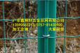 廣東養殖電焊網批發佛山養殖電焊網價格