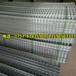 清远建筑铁丝网碰焊网钢筋网厂家