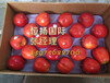广州专业的水果进口报关公司