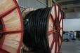 低烟无卤阻燃耐火电缆低烟无卤耐火铠装电缆特缆电工(成都)WDZAN-YJY23