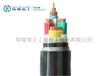 四川电缆厂阻燃铠装电缆特缆电工(成都)电缆ZR-VV22