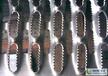 供应厂家直销304不锈钢镀锌碳钢冲孔网冲孔板