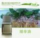 江西万绿天然香料厂家供应药用原料细辛油/细草油