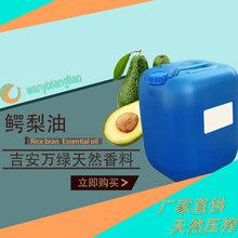 鳄梨油厂家直供手工皂鳄梨精油厂家特价批发