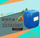 荷荷巴油厂家供应手工皂精油荷荷巴油荷荷巴按摩精油厂家特价批发
